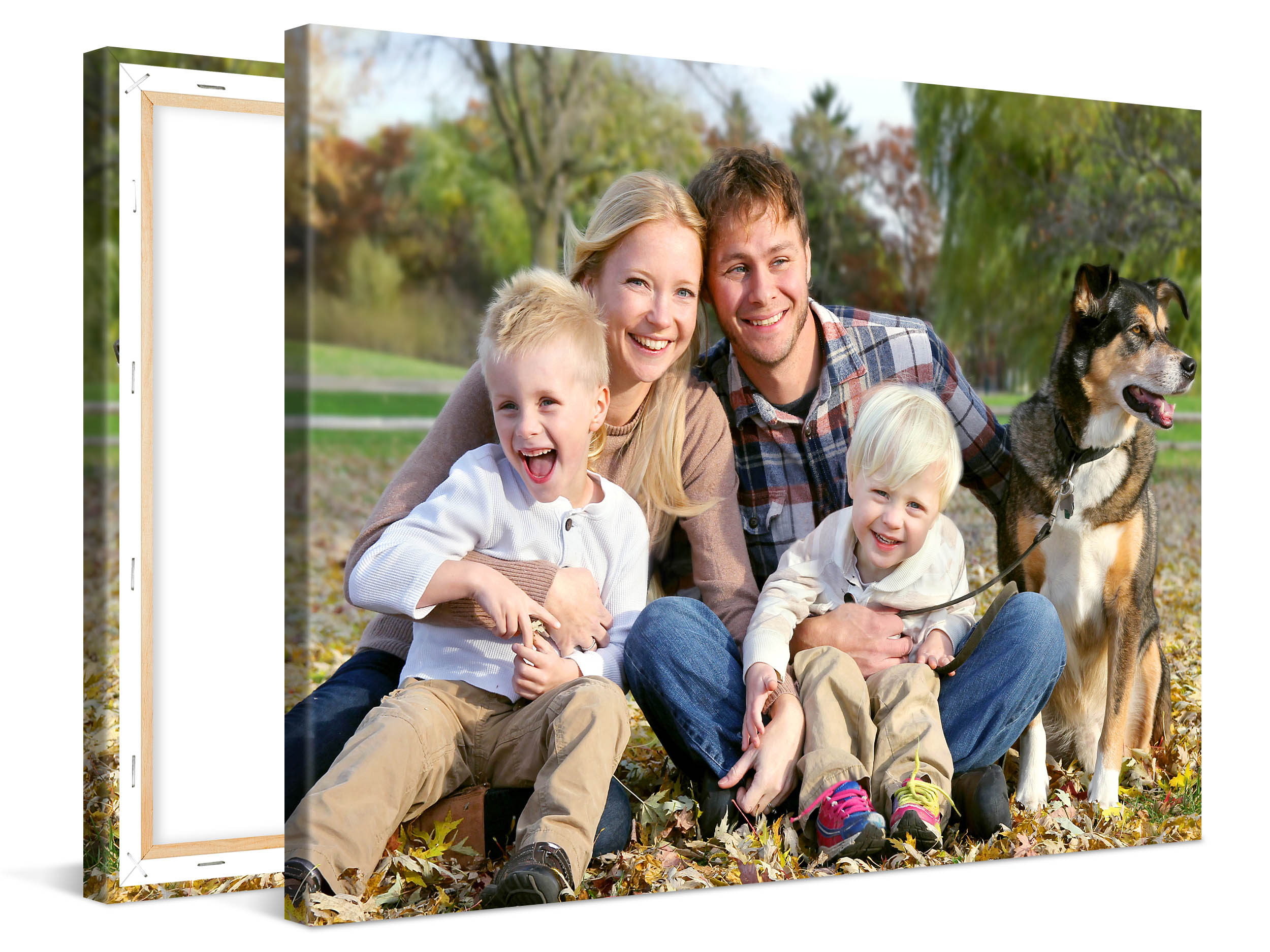 Fathers Day Canvas Special